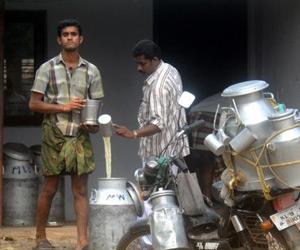 Her holder noen karer i India på og piratkopierer skyr.