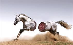 En hest