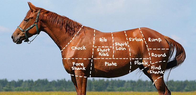 Sulten som en hest